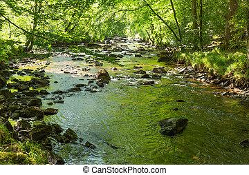 River Teign Fingle Bridge walk
