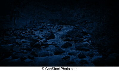 River Through The Forest At Night - Rugged forest landscape...