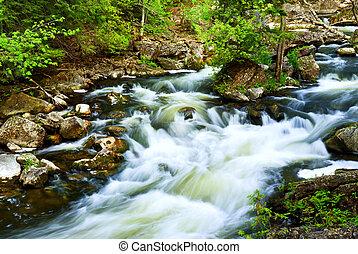 River through woods - Water rushing among rocks in river...