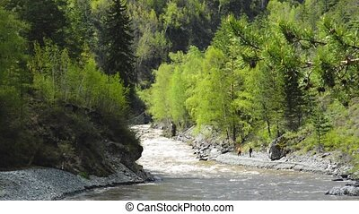river ursul out Altai
