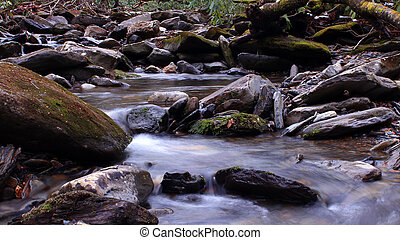 River Water Photography in the Woods of the Great Smoky Mountains National Park.