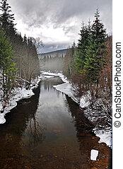 River winter landscape