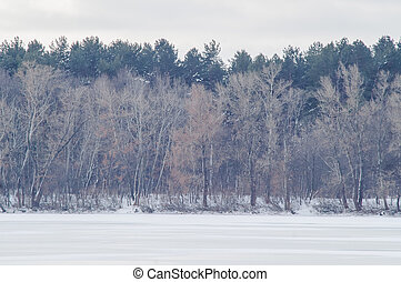 river, winter, snow