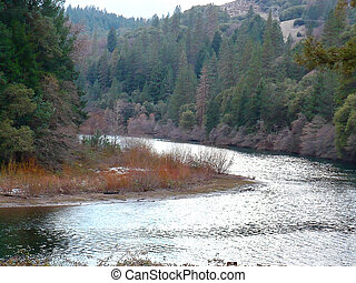 A river running through a forest in the California foothills.
