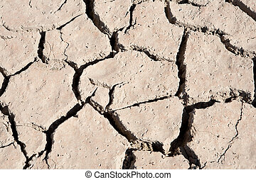 Riverbed in drought