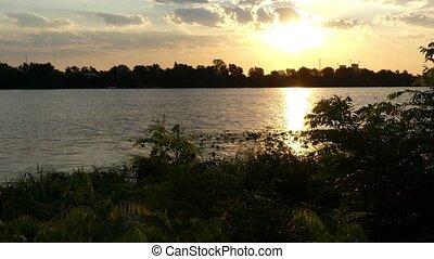 rivercoast, roseau, acaciacane, 4k, couvert vert, coucher soleil, wetland