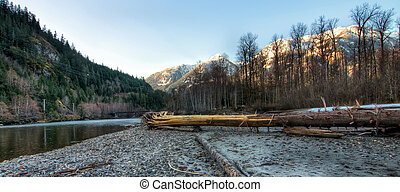 Riverside Forest with Snow Mountains - Riverside forest with...