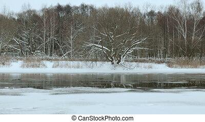 Riverside in the winter. Smooth slider shot.