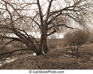Riverside Melancholy - Autumn Day by the North Platte River...