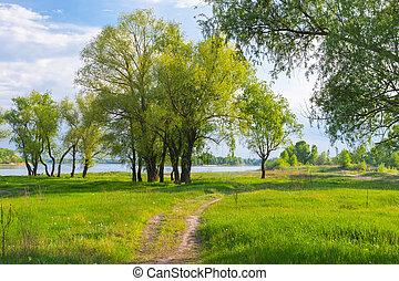 Riverside of Dnepr river near Svetlovodsk town at spring season