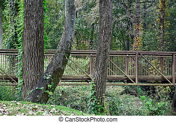 Riverside Park Cheraw SC - A bridge on a walking path at ...