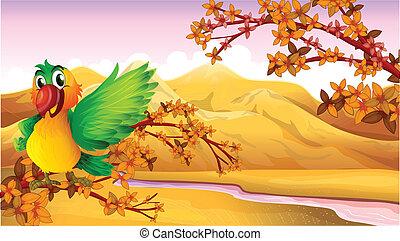 rivière, arbre, perroquet