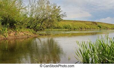 rivière, côte