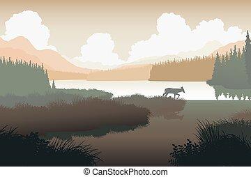 rivière, cerf, paysage