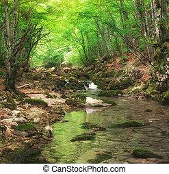 rivière, dans, montagne