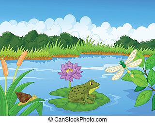 rivière, dessin animé, grenouille