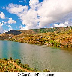 rivière, douro