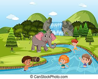 rivière, enfants, natation