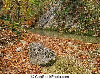 rivière, flow., forêt, automne