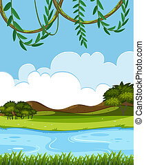 rivière, nature, vue