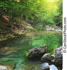 rivière, profond, dans, montagne, forêt