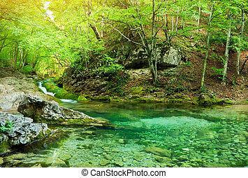 rivière, profond, dans, montagne, forest.