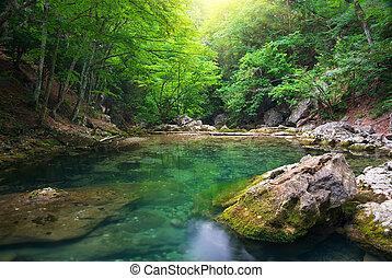 rivière, profond, dans, montagne