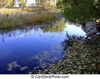 rivière, réflexions
