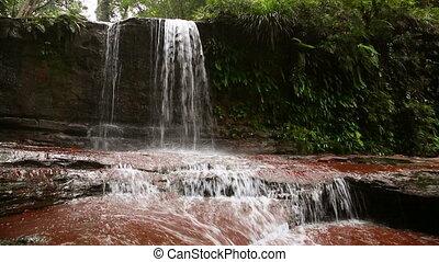 rivière, ranforest, chute eau, bornéo