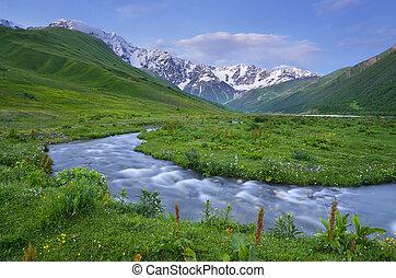 rivière, rapide, montagne