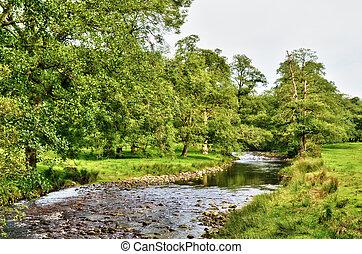 rivière, serpenter, bien, luxuriant, campagne anglaise