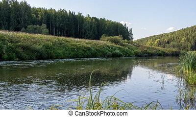 rivière, timelapse, -, écoulement, nature