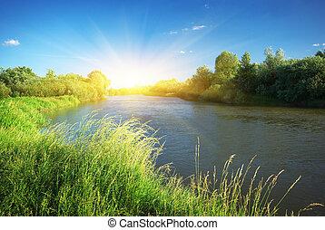 rivier, en, lente, bos