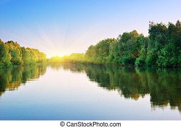 rivier, en, lente, forest.