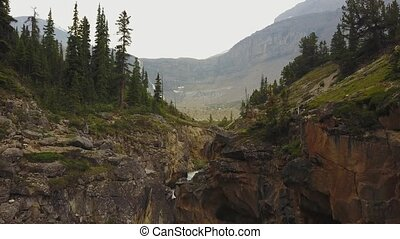 rivier, in, de, cañon, vloeiend, om te, buig meer, nationaal park banff, alberta, canada