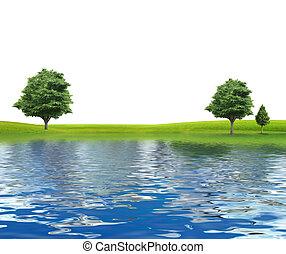 rivier, vrijstaand, bomen