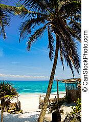 Riviera Maya Beach - One of the many idylic beach settings ...