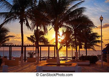 Riviera Maya sunrise beach palm trees
