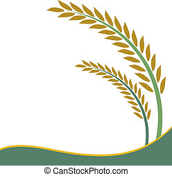 riz blanc, conception, fond