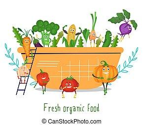 roślina, świeży, puchar, płaski, zabawny, sałata, organiczny, wektor, jadło., litery, illustration., sprytny