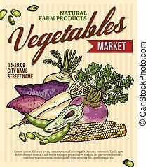 roślina, afisz, veggies, targ