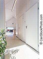 roślina, biały, jasny, korytarz