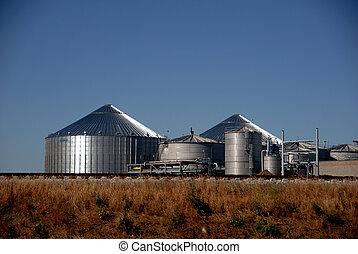 roślina, etanol