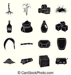 roślina, ikona, liść, sugarcane, wektor, kasownik, farm., icon., czarnoskóry, trzcina, cukier, komplet