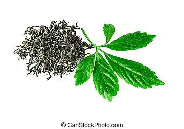 roślina, liść, ziele, jiaogulan, nieśmiertelność, zasuszony,...