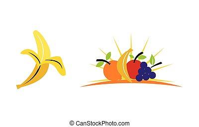 roślina, owoc, komplet, szablon