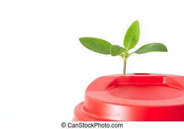 roślina, surowiec wtórny możliwy do przerobienia, papier, ...