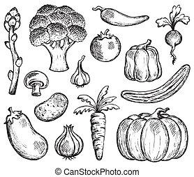 roślina, temat, zbiór, 2