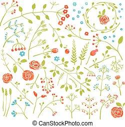 rośliny, doodle, zbiór, ozdoba, pole, kwiatowy, kwiaty