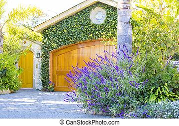 rośliny, garaż drzwi, zielony, żółty